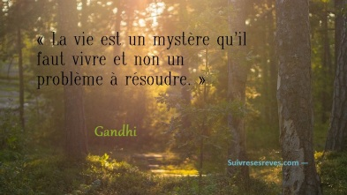 forestpathquote